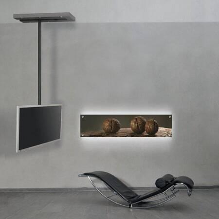 Wissmann ceiling art116
