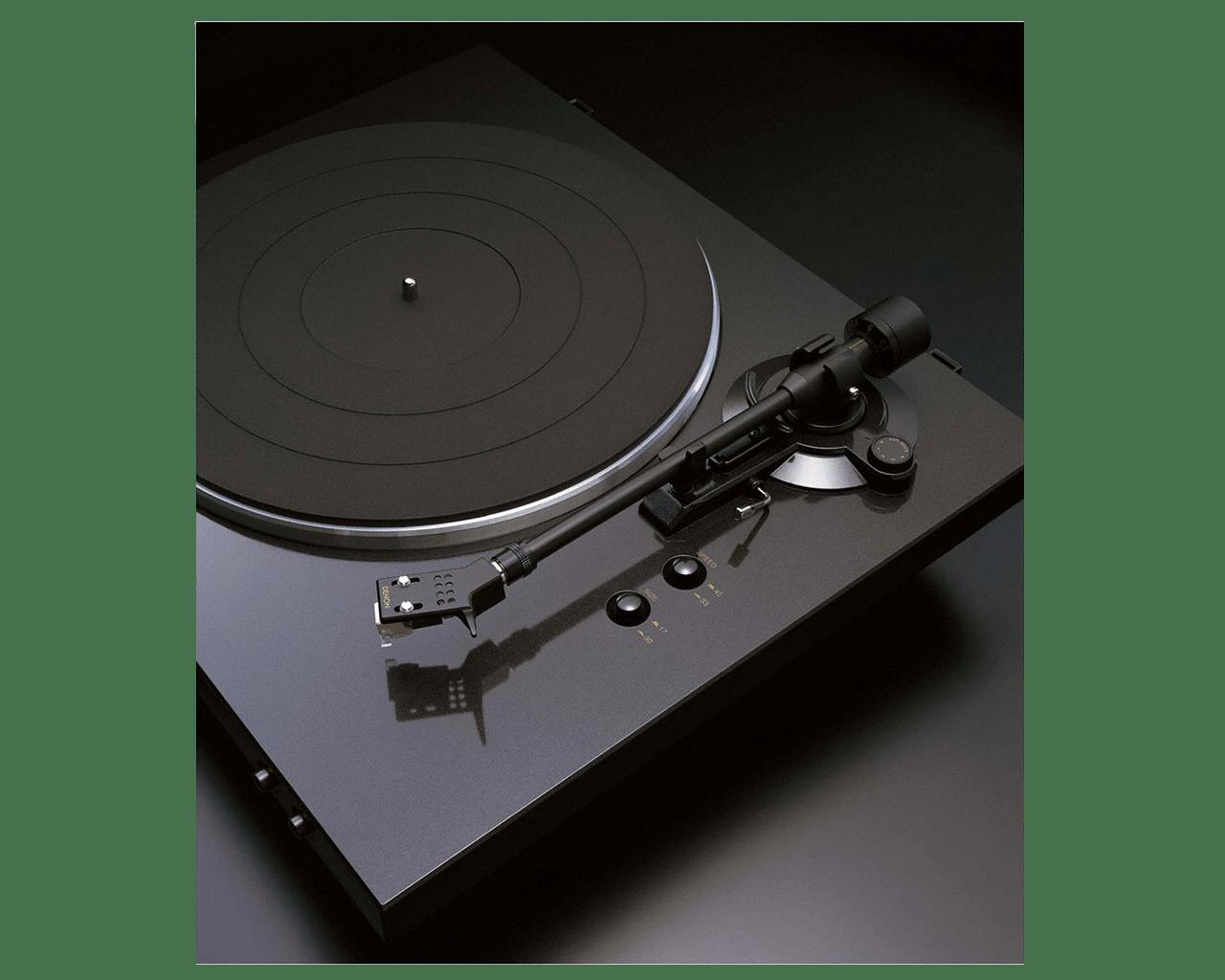 DP-300F Szene