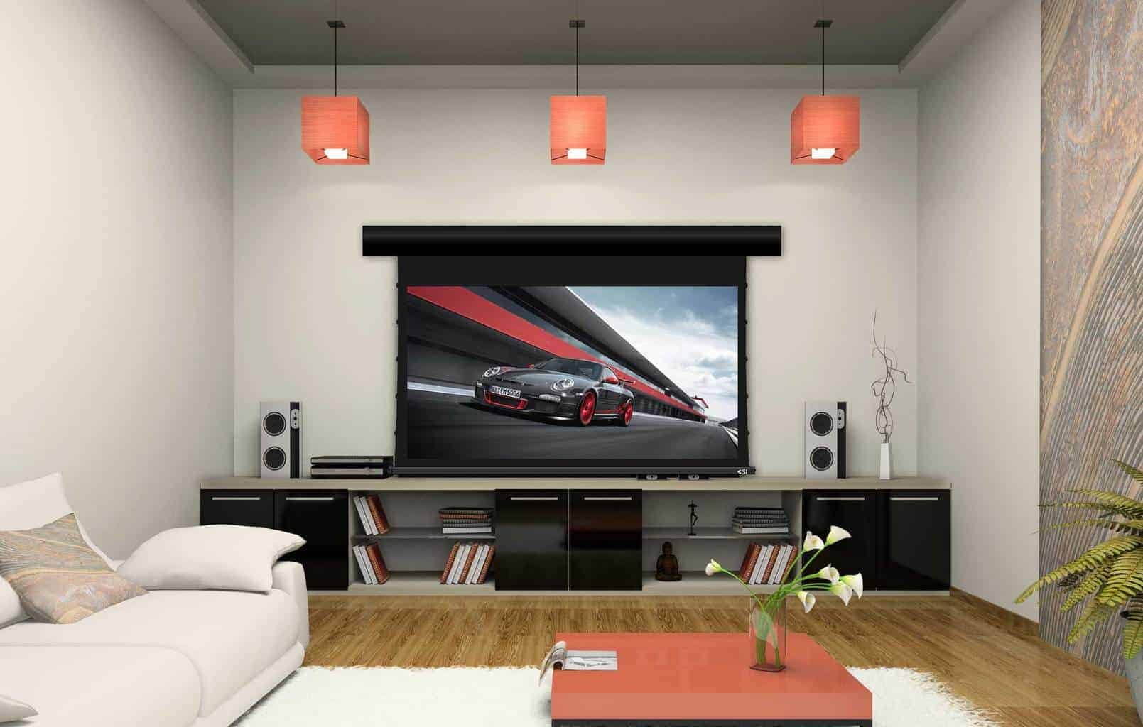 Screen Innovations Motorized EX